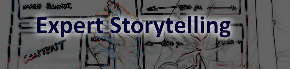 VSN Strategies Expert Storytelling